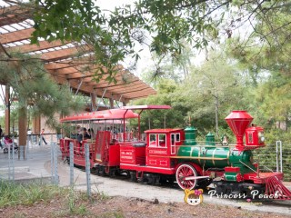 Hermann Park Railroad 小火車